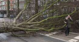 Storm caused 90 mn euros in damage: Dutch insurers