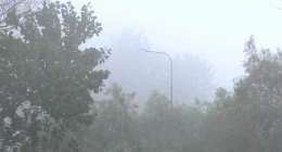 Mainly cold, dry expected, fog likely over plain areas