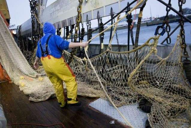Fishermen block port of Calais in protest over pulse fishing